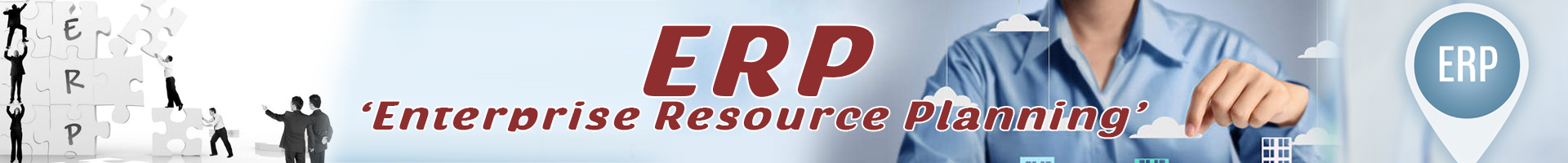 ERP Software Development Services In India